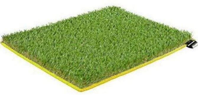 Dorsal Grass Mat